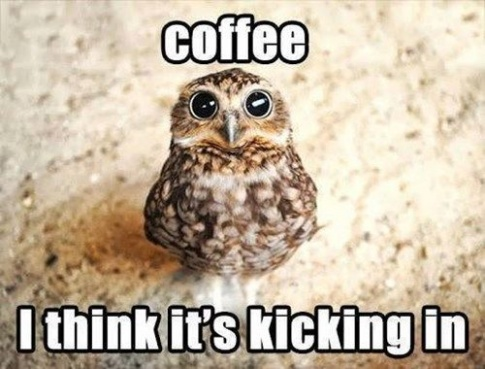 coffee, I think it is kicking in